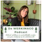 De werkimago podcast - Kim Werensteijn